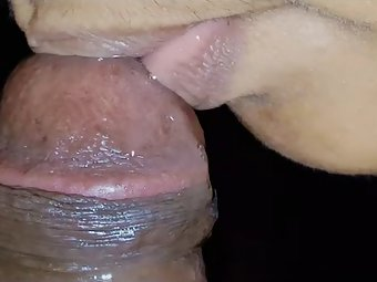 Free Sex Wild Indian Housewife Blowjob